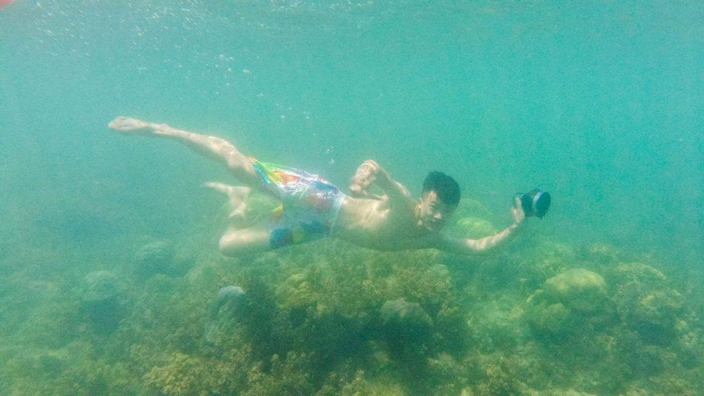 Lặn san hô cù lao chàm