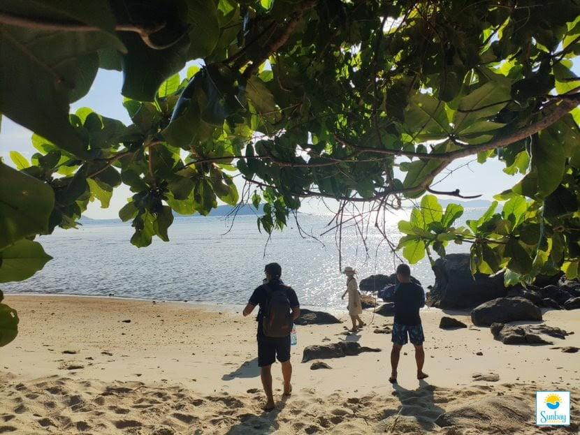 Bạn đã sẵn sàng cho một chuyến trải nghiệm trên đảo Cù Lao Chàm 1 ngày chưa?